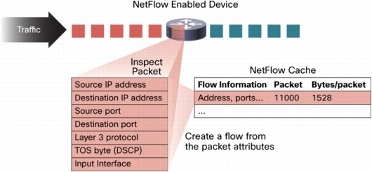 Netflow and Flow Cache Entry