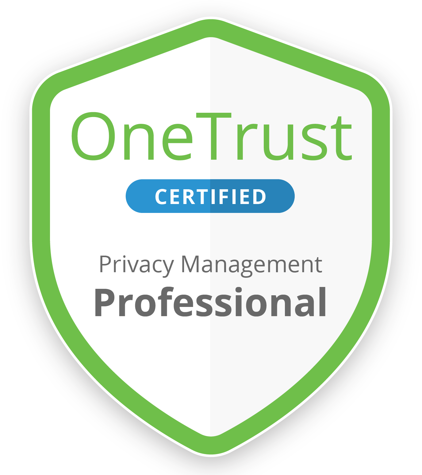 Cert_Badge_Professional